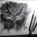 04---Owl---Carvão