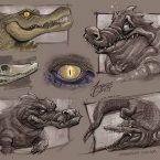 08---alligator_andrebdois_andre-bdois