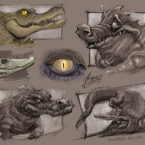 08 - alligator_andrebdois_andre bdois
