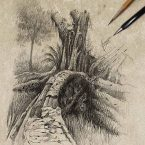 12---tree_andrebdois