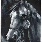 13---Horse---Guache