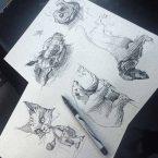 13---sketch-5---andrebdois