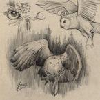 19 - owl_andrebdois