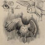 19---owl_andrebdois