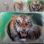 29---Tiger--Pastel-Seco